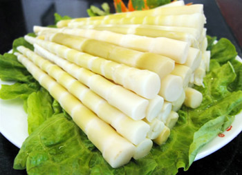 Bamboo shoots food - Bamboooz