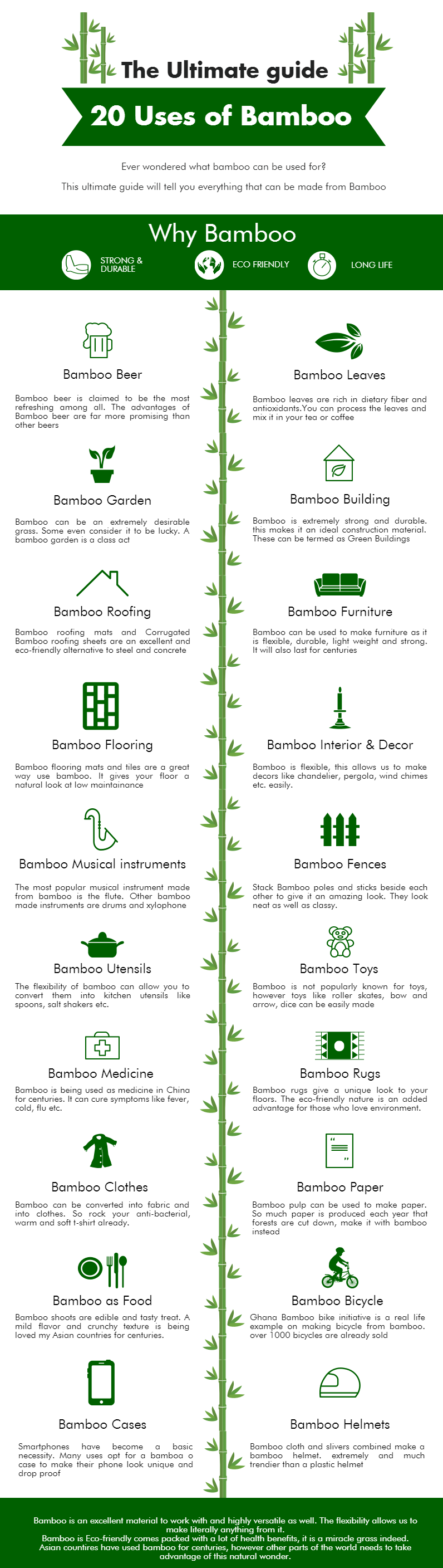 Uses of Bamboo Infographic by Bamboooz