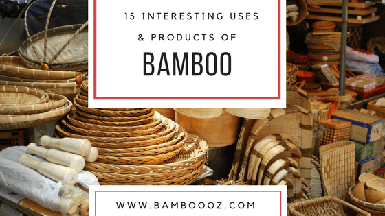 15 interesting uses and products of bamboo - Bambooz