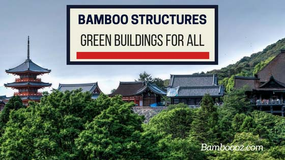 Bamboo structures: affordable green buildings for all